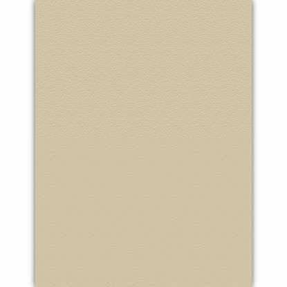 Picture of Desert Storm Tan 80lb 8.5X11 Smooth Environment Cover - 250 sheets